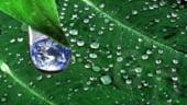 Producatorii vor incheia acorduri de preluare a energiei si a certificatelor verzi