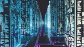 Hackeri ridicati de DIICOT: Ar fi produs prejudiciu de 25 mil. dolari