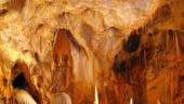 Doua pesteri de mulaj din Mures, unice in lume, ar putea fi amenajate cu fonduri europene