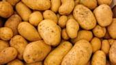 Cartofii s-au scumpit cu 21% de la inceputul anului