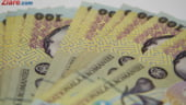 Guvernul infiinteaza pana la 1 septembrie Centrul National pentru Informatii Financiare. Va uni toate bazele de date privind fiscalitatea