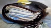 Patronii prefera sa-si faca mai multe firme decat sa plateasca impozitul pe profitul reinvestit
