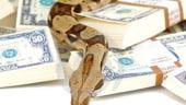 Investeste in fermele de vipere: Profit de minimum 12.000 euro anual