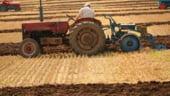 Cati bani pierd agricultorii in urma noului sistem de impozitare