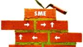 Cum pot accesa IMM-urile finantari - eveniment Business Review