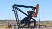 Polonia a inceput sa cumpere petrol din Nigeria pentru a-si reduce dependenta de Rusia