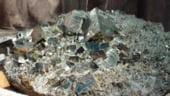 Banca Mondiala, interesata de constructia unei mine-muzeu la Aninoasa