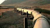 Vosganian: Implicarea Iranului in proiectul Nabucco este o decizie de natura politica si nu economica