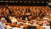 Senatul, buget cu 30% mai mare in 2011