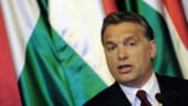 Ungaria ar putea mentine taxele speciale chiar si un deceniu