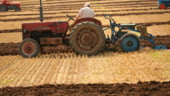 Agricultorii vor plati impozitele la primarii daca nu exista unitate ANAF in localitate