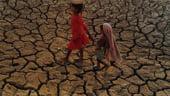 Africanii mor de foame, China le cumpara agricultura - oficial german