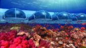 Poseidon Resort: Relaxeaza-te intr-un hotel subacvatic