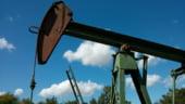 Marii producatori de petrol din lume se inteleg sa reduca productia
