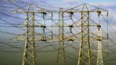 Termenul de vanzare a 10% din actiunile Electrica Moldova si Oltenia, prelungit de Guvern