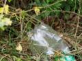 Peste 78 de milioane de tone de recipiente din plastic se produc anual la nivel mondial si marea majoritate se arunca