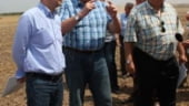 Dam pe-afara: Am ajuns sa exportam din agricultura mai mult decat importam