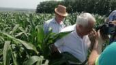 Petre Daea, de neoprit: S-a contrazis cu un fermier si a luat la masurat un lan de porumb cu... pasul (Video)