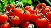Am importat aproape 60.000 de tone de rosii in mai putin de un an, iar exporturile de rosii romanesti au fost nesemnificatve