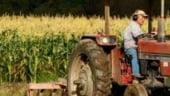 Agricultura in 2007-2009: 3 mld euro din fonduri europene