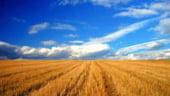 Statul va infiinta un fond de creditare a agricultorilor care acceseaza fonduri europene