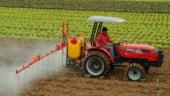 FMI: De ce reducerea TVA la alimente nu este o solutie pentru fermieri