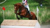 Weekend cu echitatie. Admira frumusetea cailor, la Sighisoara