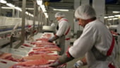 Piata chineza se deschide pentru producatorii romani de carne de porc