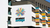 O agentie de branding din Romania a castigat cea mai mare competitie de design din lume