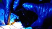 Pentagonul declara razboi virusilor informatici