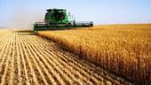 Olanda si Romania, pe primele locuri in UE la cresterea veniturilor agricultorilor in 2013