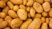 Cum mai stam cu inflatia: Cartofii s-au scumpit in 2019 cu 55%, iar benzina cu peste 6%