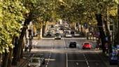Primarii din marile orase ale lumii promit o calitate mai buna a aerului: Mai multi copaci si mai putine masini!