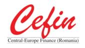 Cefin Holding urmareste triplarea cifrei de afaceri, pana in 2010