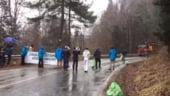 Protest pe Transfagarasan: Zeci de activisti au blocat camioanele cu lemne (Video)