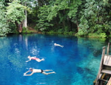 piscine naturale exotice Nanda Blue